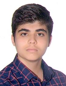 حسام الدین پور احسان